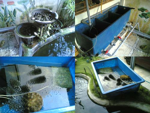 Koi Pond Filter - fixing the flush out tap