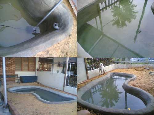 koi pond garden with no grass yet