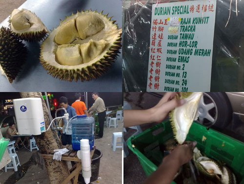 King of Fruits - Durian