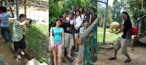 Elephant sanctuary at Pahang