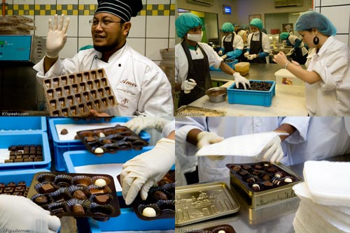 Fidani Chocolate Factory