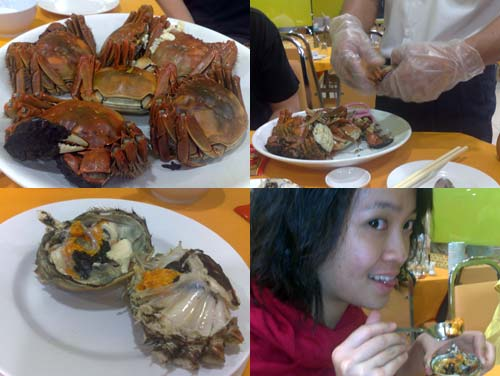 Shanghai Hairy Crab (大閘蟹)