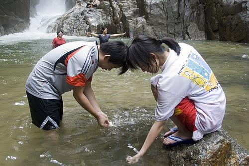 fish feeding at chiling falls