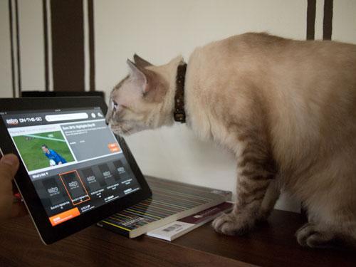 Belimbing watching Astro-On-The-Go on iPad