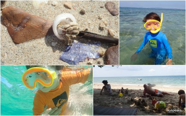 snorkeling, sand castle, and playing with hermit crab