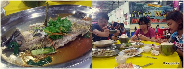 steamed 7-star garoupa, Sg. friends & Haze