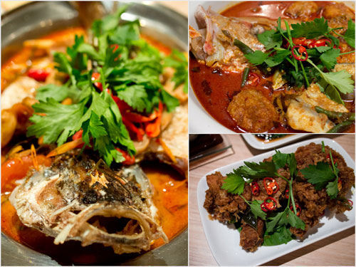 siakap tomyam, curry fish head, and fried chicken