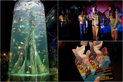 Aquaria KLCC Shark in the City Cage Rage launch