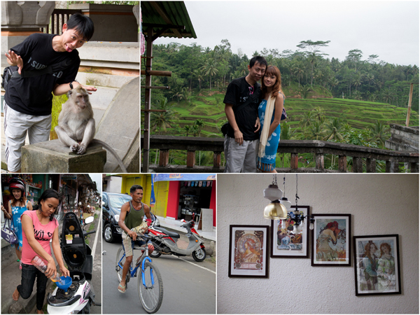 monkey forest, paddy field, motorbiking, chicken on bicycle, art
