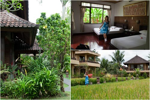 Sri Bungalows with lush green padi field at the back