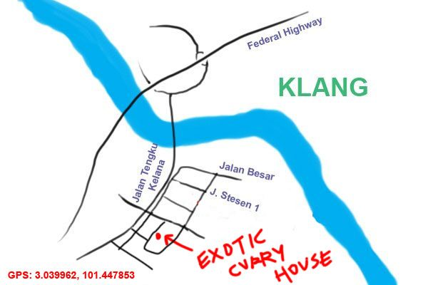 map to Exotic Curry House, Klang