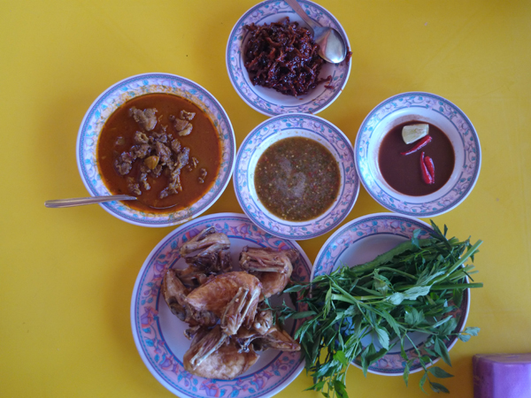 we had chicken, beef curry, ulam, and plenty of sambal
