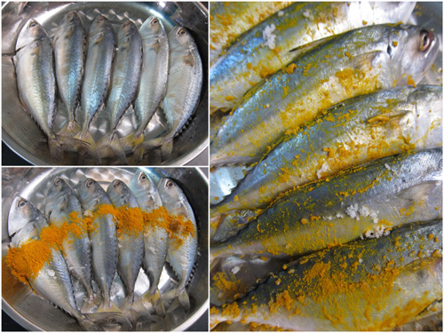 marinate ikan kembung with tumeric powder and salt