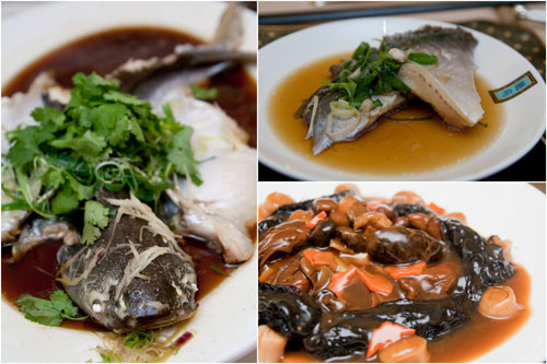 steamed patin fish with superior soya sauce, braised dried scallops with dried oyster and sea moss