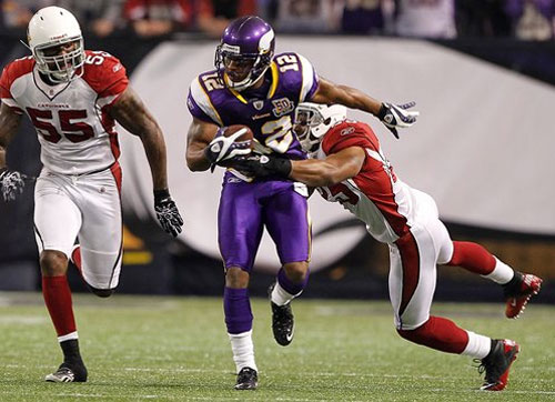 Minnesota Vikings, Adrian Peterson