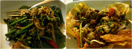 paku pakis, gai tod gratiam prik thai duck salad