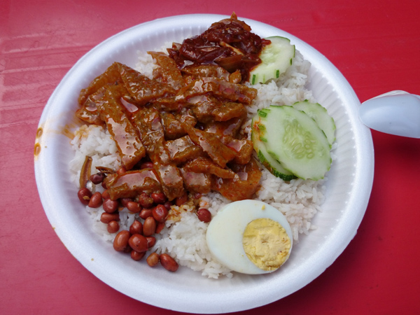 nasi lemak with curry pork skin, what more can you I ask for?