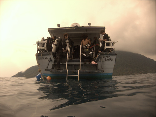 Pulau Aur Diving