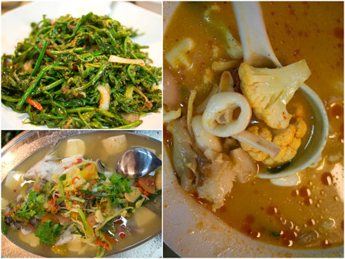 paku, Thai steamed siakap, seafood tomyam 