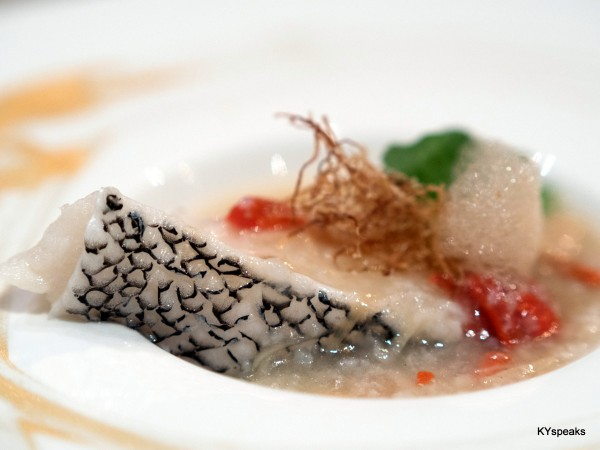 steamed cod fish with chinese herbs