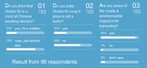 sharks fin survey results