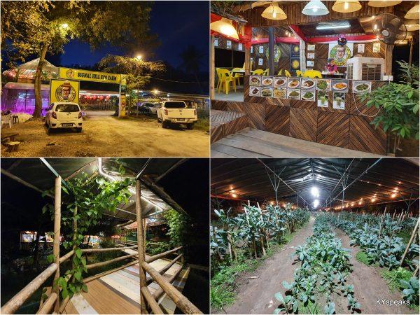 Kota Kinabalu Signal Hill Eco Farm