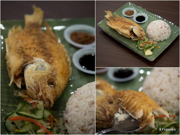 the classic - Borneo Eco Fish Meal (tilapia)