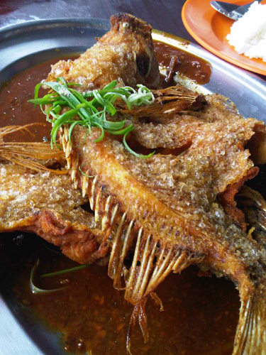 delicious deep fried tilapia