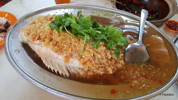 steamed tilapia with plenty of garlic
